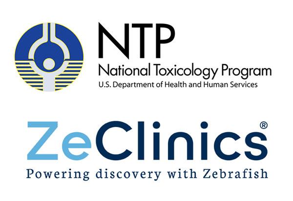 zeclinics-seazit