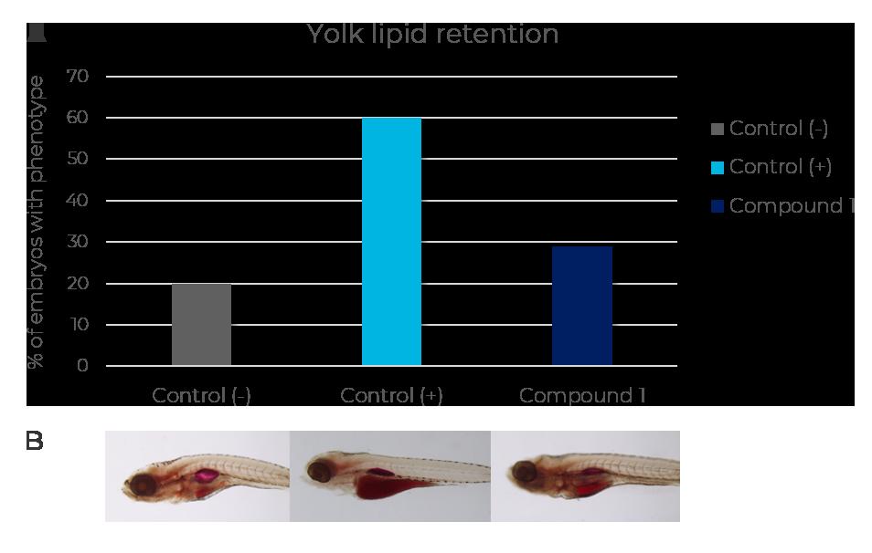 yolk-lipid-retention